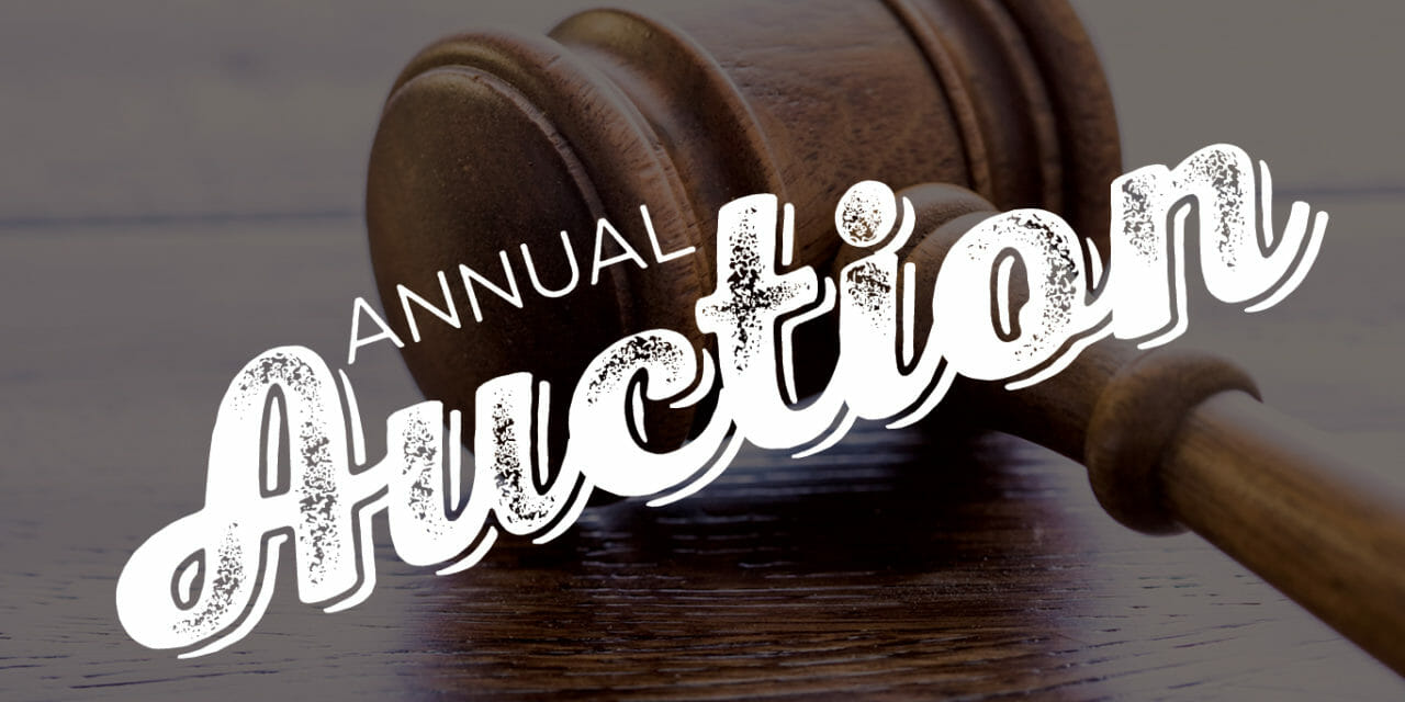 Annual SECA Auction