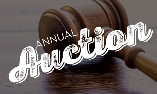 30th Annual Benefit Auction