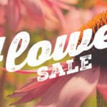 Flower & Plant Sale Coming!